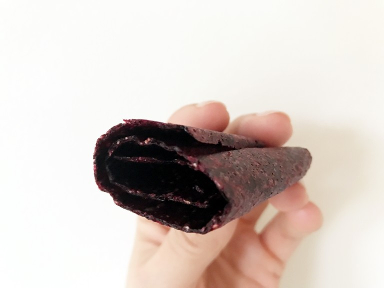 homemade fruit roll ups with dried fruit