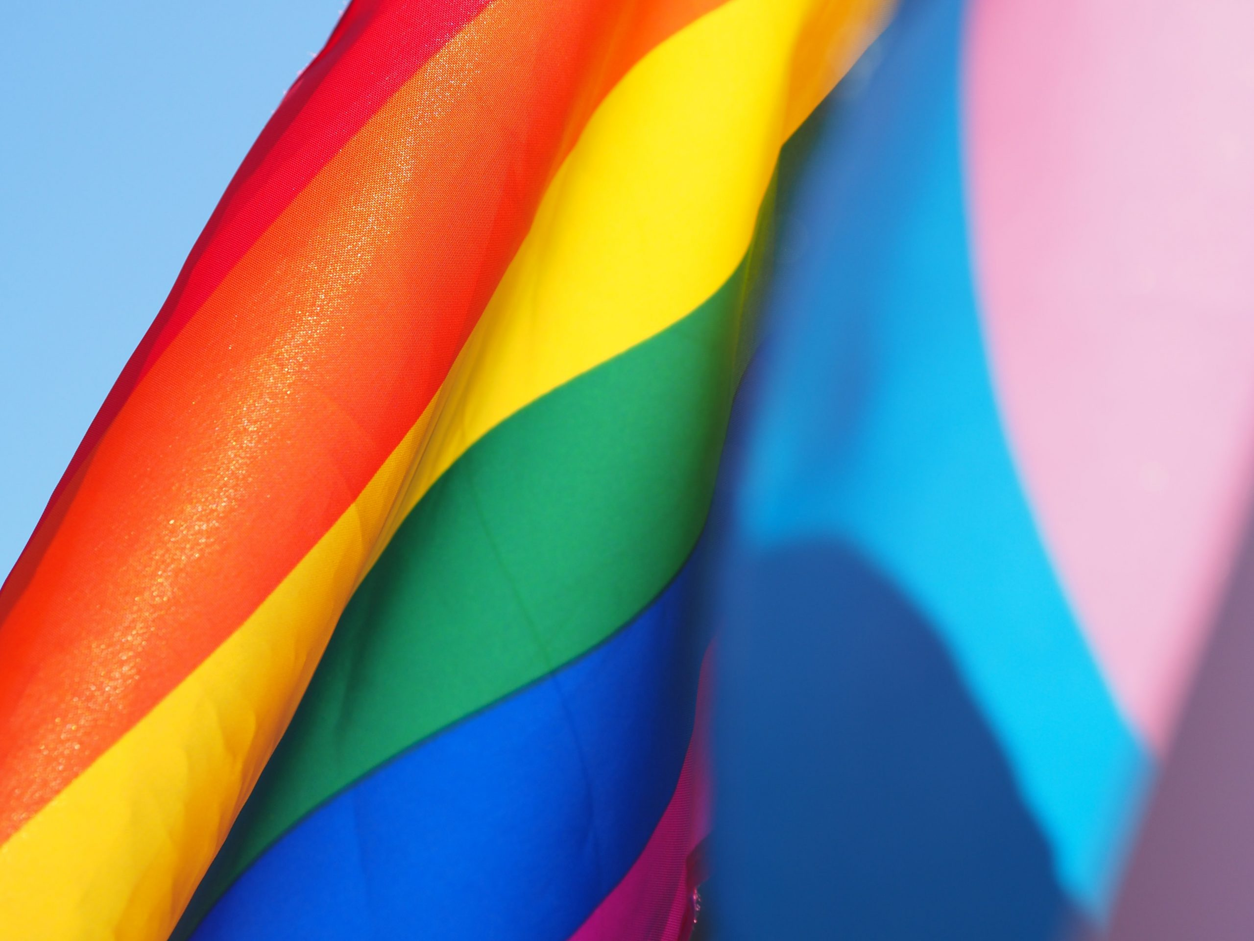 LGBTQ+ businesses to support during Pride Month