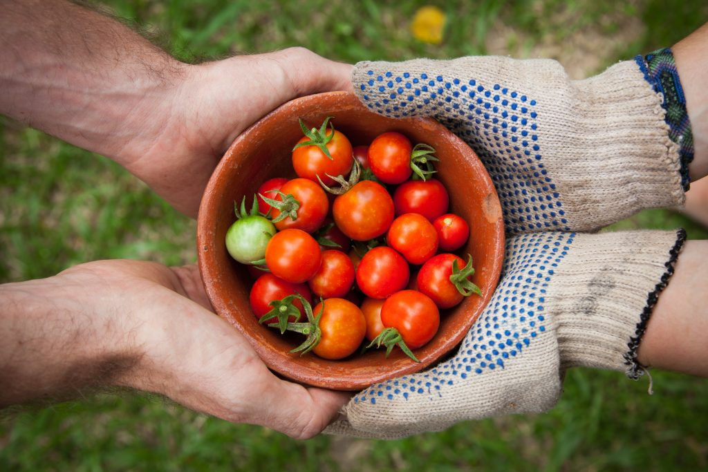 Mamas for Mamas created sustainable nourishment programs to provide fresh fruits and veggies to families in need